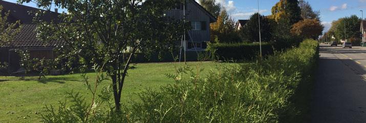 mehrfamilienhaus-wohnungen-in-frauenfeld